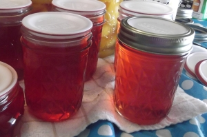 Waste not, want not: Jelly from peach skins and seeds